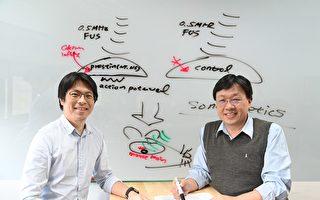 清华用超音波活化脑细胞成功治疗帕金森氏症