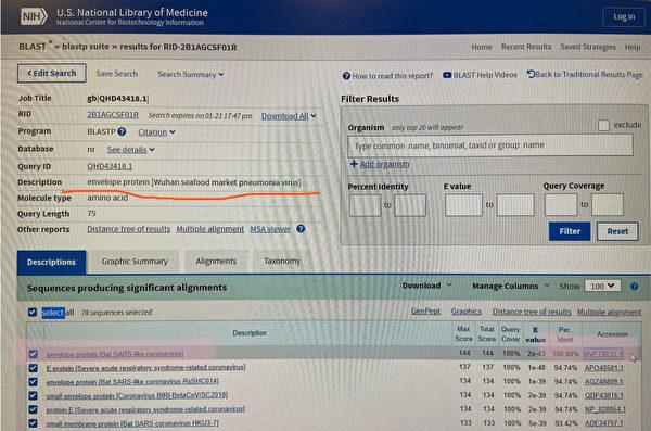 粉紅高亮區的信息顯示,武漢海鮮市場病毒樣本與編號為「AVP78033.1」的病毒樣本比對,其E蛋白相似度高達100%。(G-NEWS)
