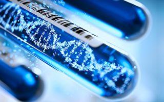 科學家成功提取150年前龍蝦標本DNA