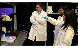 新型过滤纸材料长期冷冻人类细胞