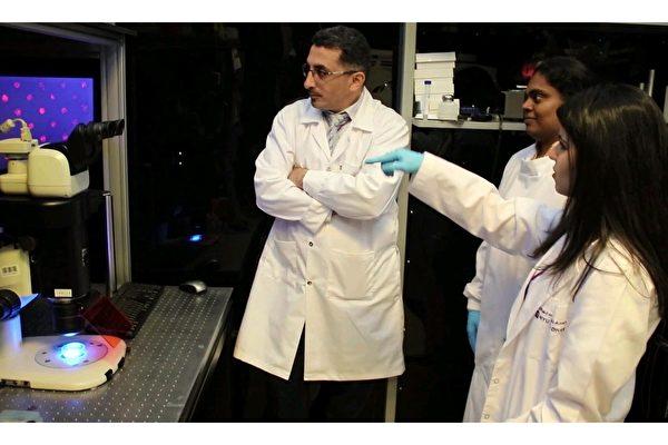 新型過濾紙材料長期冷凍人類細胞