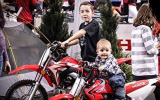 周末好去处(2月21日~23日)摩托车展 种子日 老明信片展
