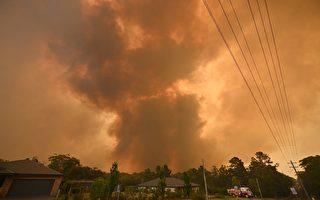 澳洲丛林大火危机中 房客的权益