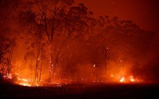 新州火灾区周末将降大雨 山火危害或大减