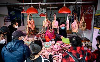 新冠肺炎持續 中國大規模殺雞 進口美活禽