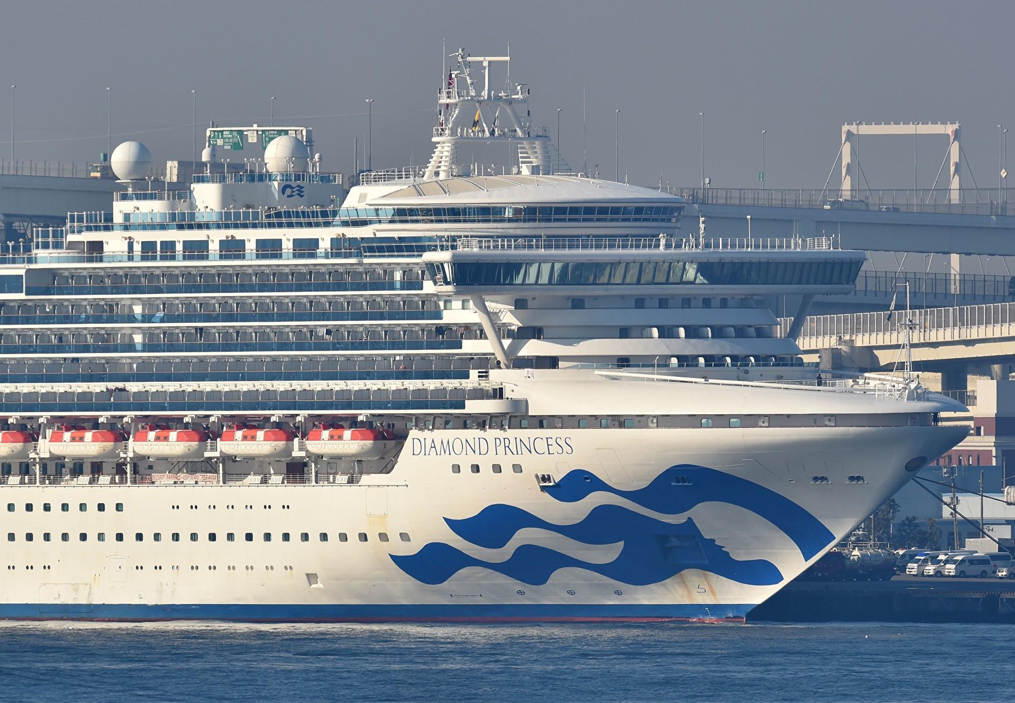 日本政府擬修正相關行政命令。自2020年2月14日起,飛機或船舶上只要有一人為中共肺炎確診病例,全部乘客一律不能入境。(Kazuhiro NOGI/AFP)