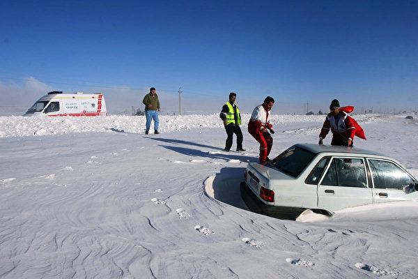 羊群遭大雪掩埋 伊朗农民奋力挖出 救活不少