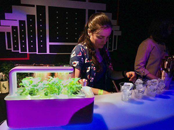 图:今年温哥华科学馆《鸡尾酒美食筹款之夜》于2月6日举行,乃每年城中盛事。(温哥华科学馆提供)