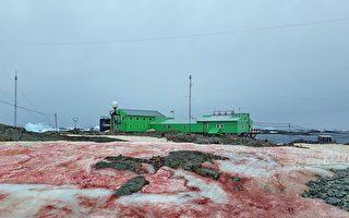 烏克蘭的南極基地出現異樣的雪 一片血紅色