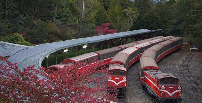 林鐵《綻放。舞櫻》主題列車 阿里山限定