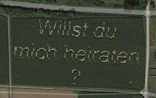 德男玉米田「種」求婚訊息 Google地圖幫留念