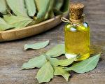 预防武汉肺炎,口罩滴精油并不合适,如何正确用精油提升免疫力?(Shutterstock)