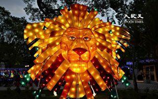 動物狂歡嘉年華  馬場區燈會試燈