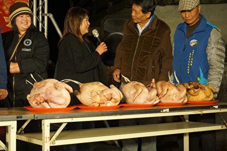 罗厝村掼鸡酒比赛 现场评比看谁养的鸡最大