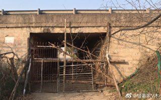 湖北省某地封村。(网络图片)