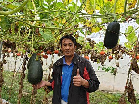 里港鄉農民李文修擔任體育老師之餘,還種出各式美味的栗子南瓜品系,曾獲產銷履歷達人。