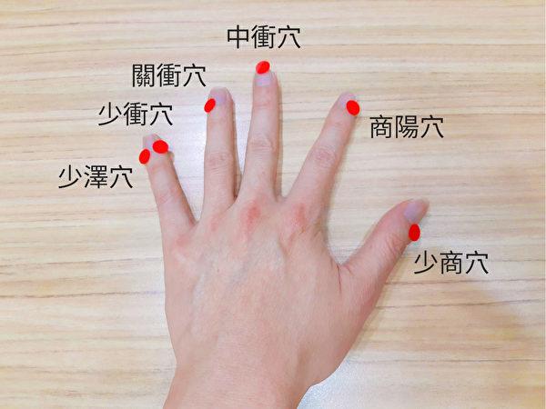 提神穴位之六:十二经穴的手部穴位。(吴建东提供)