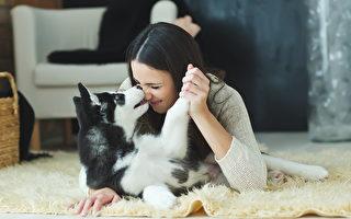 主人若感染中共病毒 寵物也會傳染嗎?