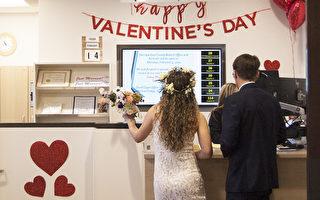 情人节 圣地亚哥县结婚登记多
