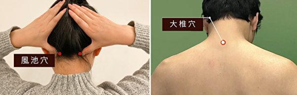 大椎穴和風池穴可一同保暖,除了穿高領衣服外,建議用寬版的圍巾。(大紀元製圖)