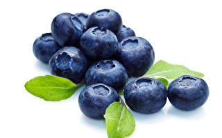 7月成為緬因州「全國藍莓月」