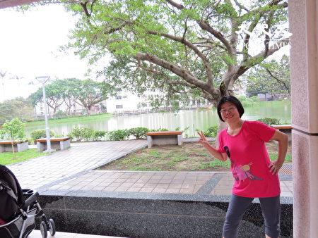 """中央大学校景优美,素有""""桃园市的桃花源,中坜区的大公园""""之称。"""