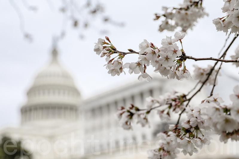 美參議員提新法懲罰中共偷技術 擬祭制裁