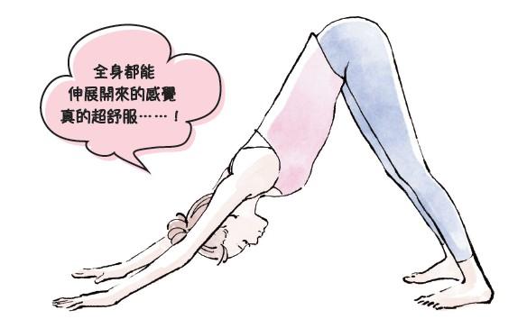 下犬式伸展使身體內側的全部肌肉都能得到伸展,提升身體柔軟度,增加肌力。(采實文化)