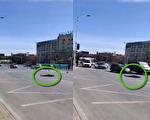 大連街頭,突然又有人在馬路中間倒地不起。(視頻截圖)