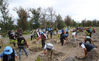 3月植树月 台东林管处3千苗木赠民众