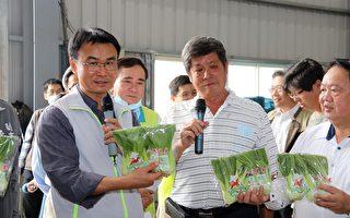 農委會主委陳吉仲:米糧及蔬菜供應無虞