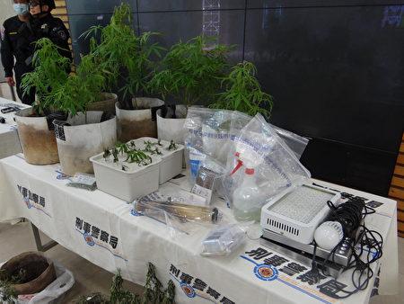 偵二大隊破獲大麻工廠,查獲大麻活株22株、乾燥大麻成品、分裝袋、烘乾設備、種植及製造大麻工具1批。