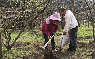 友善环境资材有补助 合理施肥省工增地力
