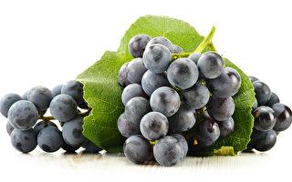 中共对澳贸易再发难 澳洲鲜葡萄清关遭拖延