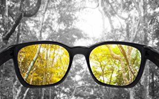 高科技隱形眼鏡可矯正色盲