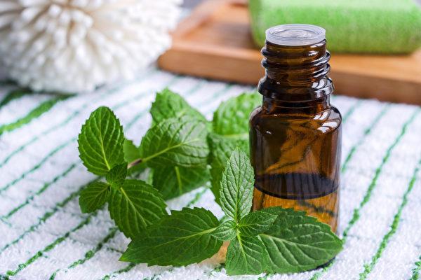 胡椒薄荷精油的3种用法,可以轻松改善鼻塞。(Shutterstock)
