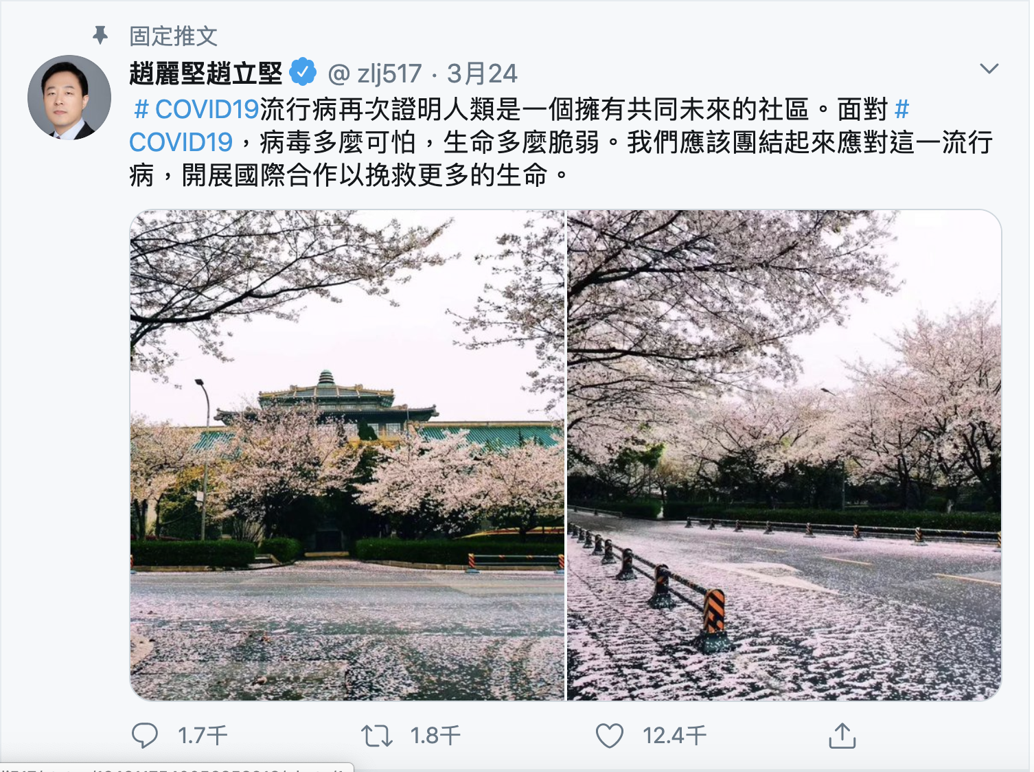 24日,中共外交部發言人突然發了一條強調與世界各國合作共同應對疫情的推文。(網絡截圖)