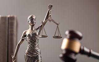研究找到法律本源:人类普世的直觉