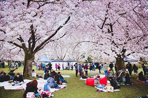 溫哥華QE公園戶外野餐 (官方臉書照片)