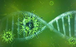 专家分析中共关于中共病毒的两大谎言