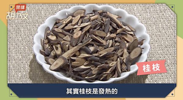 桂枝湯、麻黃湯中都有桂枝,而桂枝能讓身體發熱,從而促進發汗。(胡乃文開講提供)