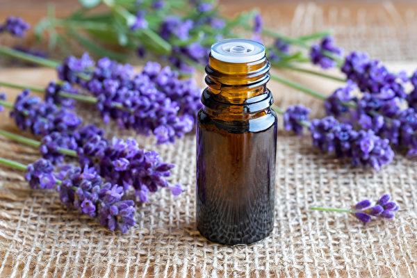 纯正薰衣草同时有抗菌和抗病毒的效果,很适合添加到家庭清洁用品中。(Shutterstock)