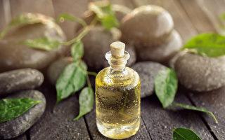 茶樹精油:強力抗病菌、抗炎 3種熱門用法