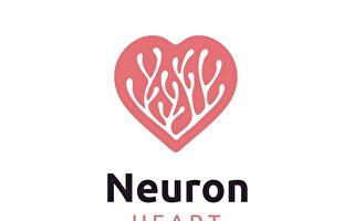研究:每次心跳 脑细胞都跟着颤一下