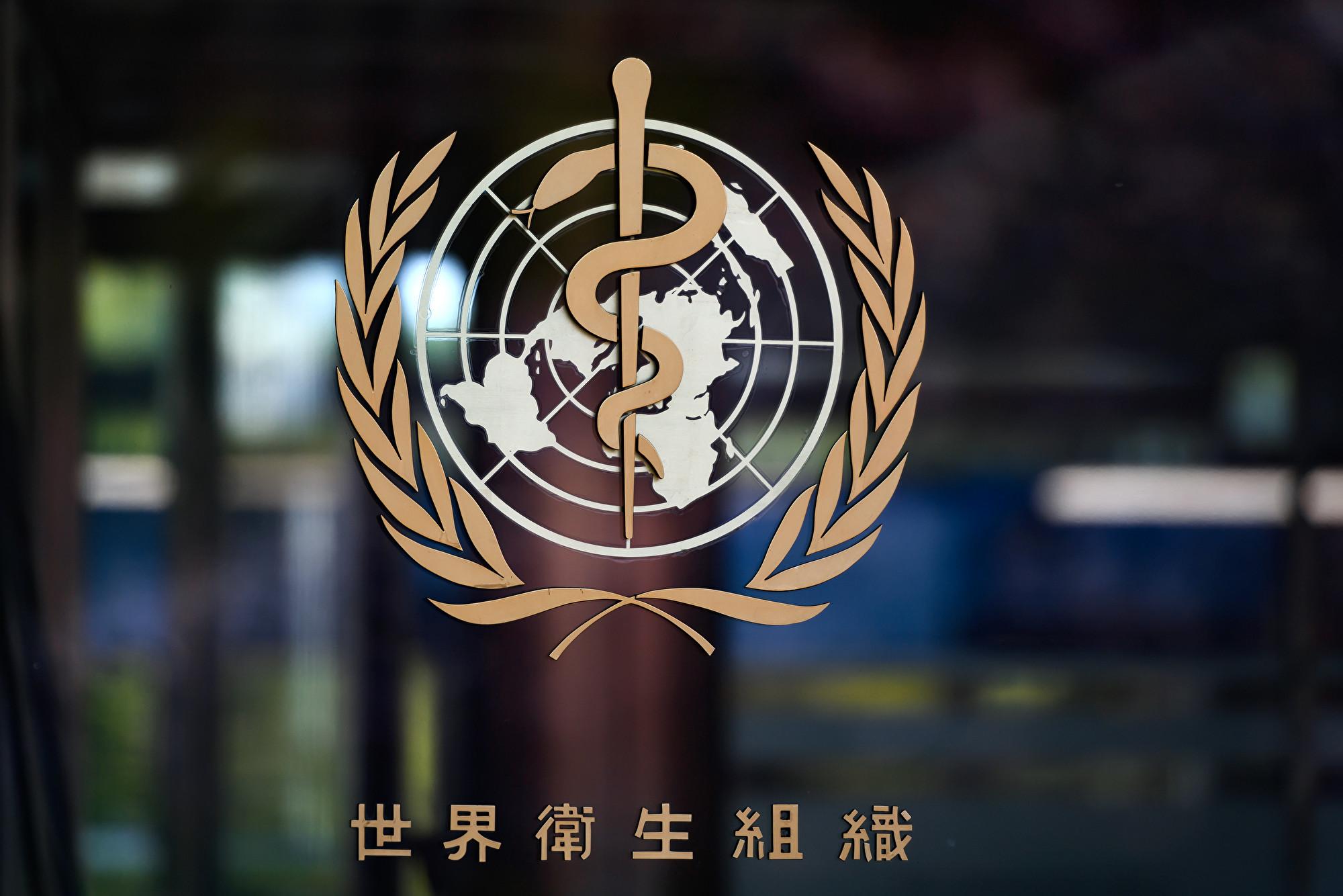 白宮:G7領袖同意合作抗疫 促WHO改革