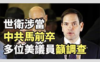 陳思敏:中共滲透大損世衛信譽 美國啟動調查