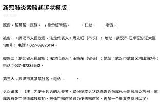 狀告武漢政府 海外律師團提供訴狀模板