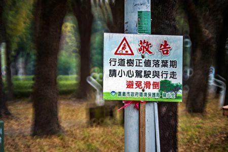 也提醒民眾,微風吹拂容易導致落葉變多,加上天氣不穩定,若有下雨的情形,可能使道路變得更滑,請放慢腳步,小心慢行。