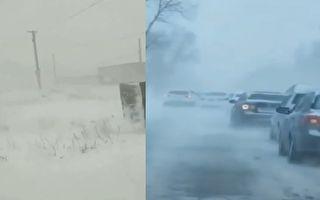 【現場視頻】穀雨已過 黑龍江吉林突降大雪
