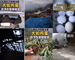 【現場視頻】雲南遭大冰雹襲擊 房屋莊稼被毀